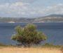 Οικοτουρισμός: Εναλλακτικός τουρισμός για τη φύση